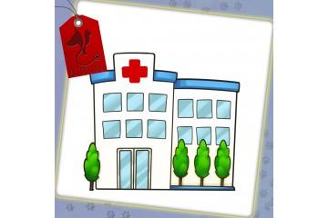 بیمارستان  دامپزشکی   درین